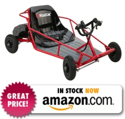 Razor Dunn Buggy Electric Go Kart
